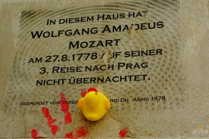 Salzburgs Spuren in Wien